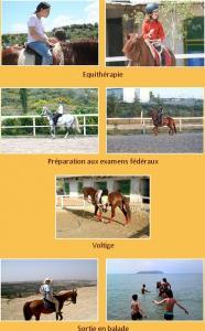 Formation �questre � Tlemcen, visitez �cole cheval