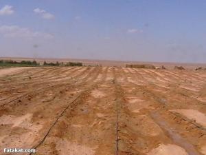 بيع قطعة أرض