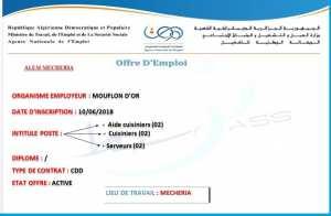 Alem Mecheria;Offres d'emploi