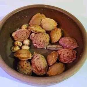 قريباً سيكون موسم الفواكه مثل الخوخ ، البطيخ ، الكرز ، المشمش ، المانجو ، الأفوكادو ، العنب ، إلخ...