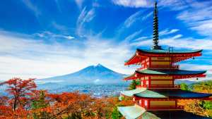 Offers of paid scholarship from Japan