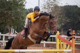 Équitation à Tipaza avec yes Adventures
