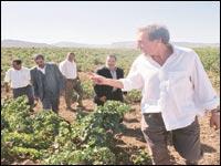 Depardieu lâche ses investissements à Tlemcen