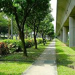 Quel rôle pour les architectes paysagistes ?