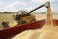 Produits alimentaires : des marchés plus équilibrés en 2013-2014, des récoltes record