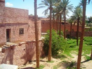 قصر تيوت دراسة أثرية ومعماري