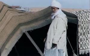 قبيلة العمور بولاية النعامة