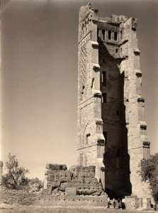 La ville de Tlemcen à travers l'Histoire