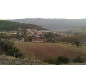 COMMUNE DE TALASSA (CHLEF) : La détérioration du cadre de vie dénoncée par les habitants