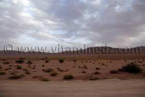 Au cœur des zones steppiques de Tlemcen à Naâma