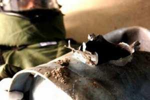 العثور على قنبلة بأرض متنازع عليها بتبسة