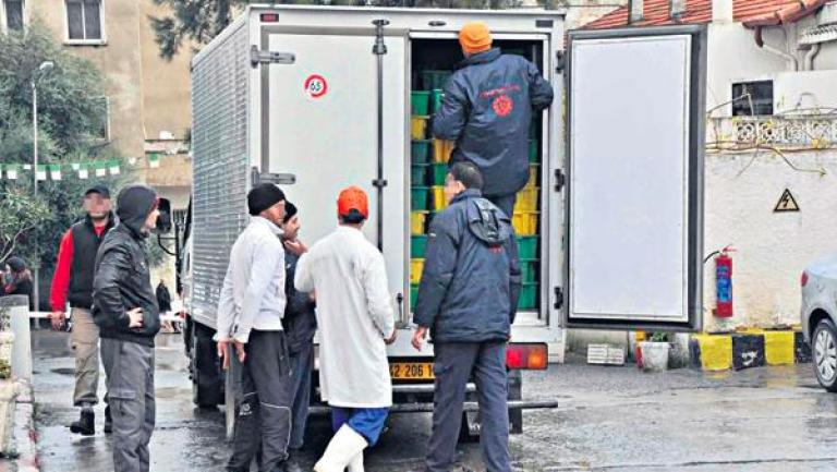 تراخيص خاصة لشاحنات التبريد لتوزيع الحليب