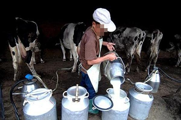 إسطبلات لإنتاج الحليب مهملة وأخرى استولى عليها غرباء بعين الدفلى