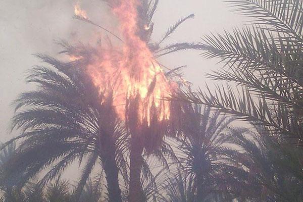حريق مهول يتطلب تدخل مئات من أفراد الجيش بعين صالح