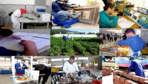 Formation professionnelle : Cinq conventions signées à Tizi-Ouzou