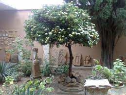 متحف تيبازة