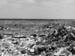 Visite du ministre de l'Environnement à Ouargla: Situation environnementale alarmante