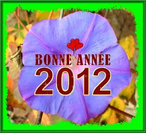 VOEUX DE BONNE ANNEE 2012