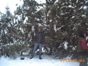 La neige paralyse entièrement la région de khenchela