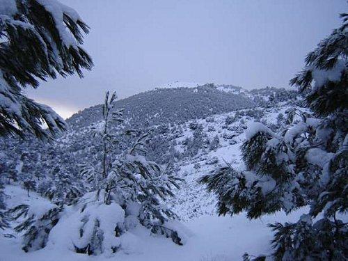 Alg rie regain de chutes de neige en haute kabylie le for Haute kabylie