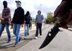 عصابات تزرع الرعب في قلوب سكان حي 8 مارس بعنابة