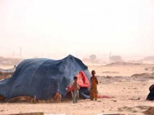 Timiaouine : le râle des réfugiés touareg