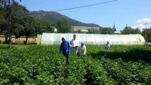 Oran: le CFPA de Misserghine, pôle d'excellence de formation agricole