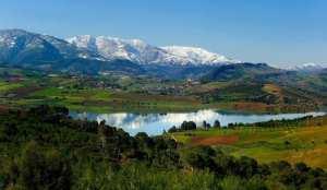 Sidi Amar (ex- Zurich), est une commune de la wilaya de Tipaza