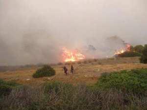 Mostaganem - Plus de 10 hectares de forêt ravagés par le feu