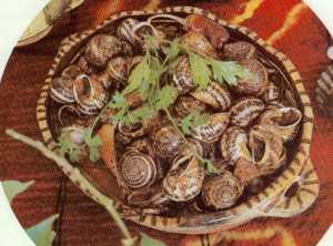 Escargots aux oignons et aux tomates