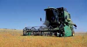 Relizane - L'agriculture mise sur la filière des légumes secs
