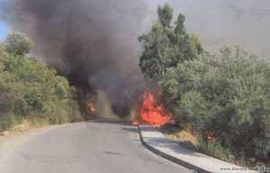 المديرية العامة للغابات تقدم شكوى إلى الدرك حول الحرائق فديرالية الغابات تتهم مقاولات بالوقوف وراء الحرائق