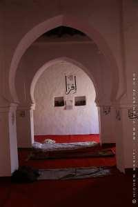 Boussemghoun: Des Guinéens sur les traces de Cheikh Tidjani