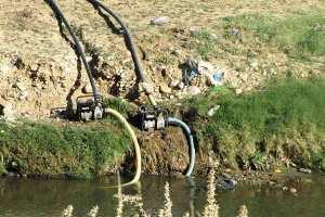 فلاحون يصرّون على سقي المحاصيل بمياه الصرف الصحي بباتنة؟!
