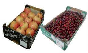 Grâce à l'initiative de deux jeunes opérateurs d'Annaba:  Des fruits et légumes locaux sur les étals des marchés français