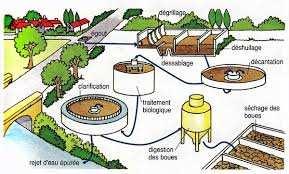 Guelma - Les eaux recyclées au service des périmètres irrigués