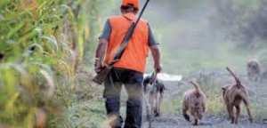 Safsaf (Mostaganem) - Le braconnage menace les espèces protégées