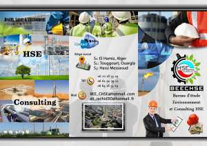 HSE SERVICES AND CONSULTING