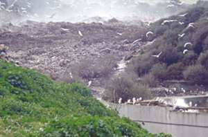 Le CET de Bouguerguer (Guelma) saturé: 5 communes pour la réception des déchets