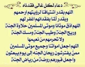 رحيل الدكتورة فافه نادية رحمها الله.