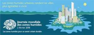 NAÂMA - Célébration de la Journée mondiale des zones humides