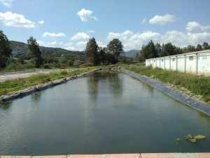 Formation Pratique Agro-piscicuture