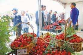 La production a pratiquement doublé cette année: Skikda a fêté sa fraise