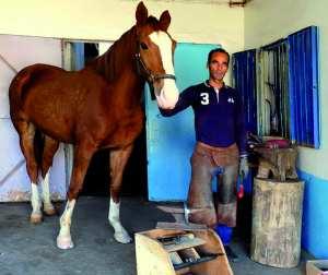 Portrait. Riad Ghadab , maréchal-ferrant à Skikda: «Pour l'amour des chevaux»
