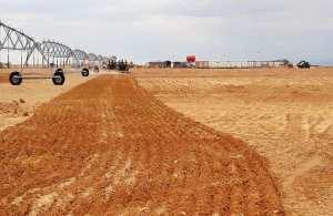 Implanté au sud de Khenchela: Le projet «Cosider Agrico» avance à grands pas