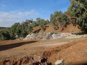Constantine - La forêt d'El Djebasse transformée en décharge sauvage!