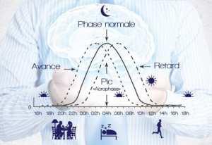 Photothérapie et horloge biologique du sommeil