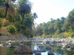 Biskra la Porte du sahara