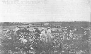 أولاد سيدي الشيخ كانوا أول الجزائريون الذين هجروا إلى كاليدونيا الجديدة