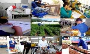 Formation professionnelle: vers la généralisation des établissements d'excellence